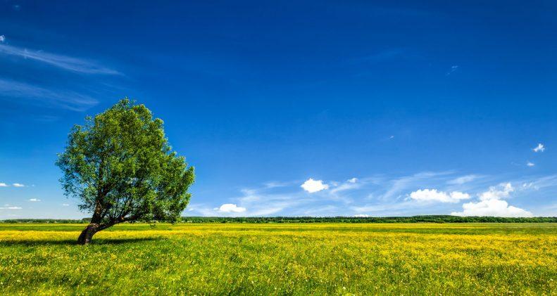 fernwärmerohre_Fernwärme-Wirtschaft-ist-in-Vorleistung-getreten-und-bietet-konkrete-Lösungen-für-Energiewende-an